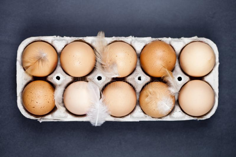 Farm chicken eggs in cardboard container and feathers stock photo