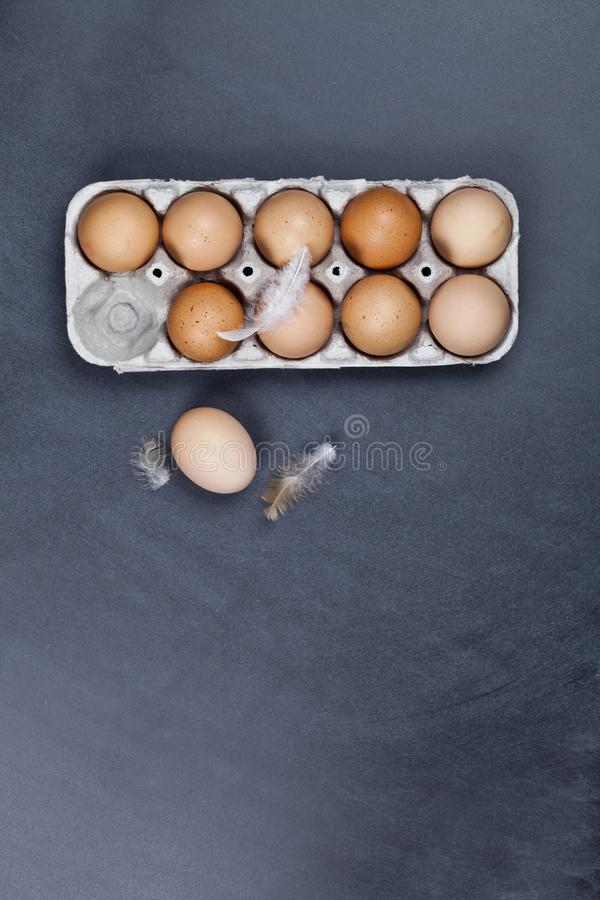 Farm chicken eggs in cardboard container and feathers stock images