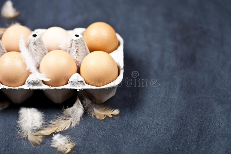 Farm chicken eggs in cardboard container and feathers royalty free stock photos