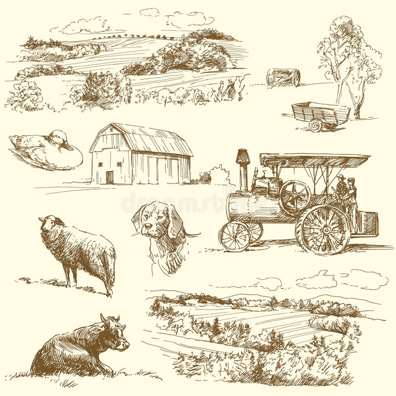 Download Farm collection stock vector. Illustration of icon, animal - 26222281
