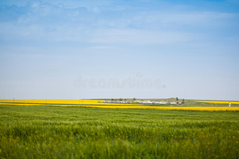 Download Farm in the countryside stock photo. Image of summer - 14596980