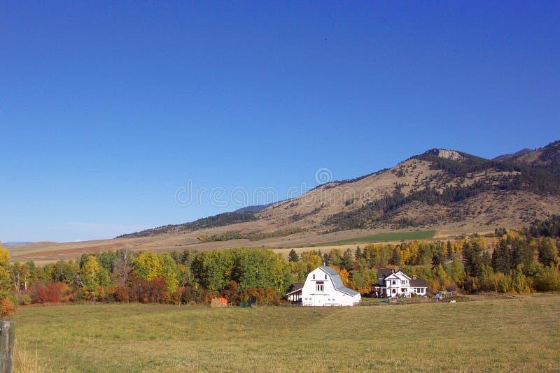 Download Farm del sig. White fotografia stock. Immagine di casa - 210476