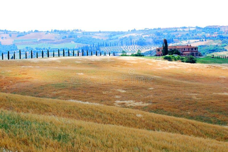 Farm and farmland in Tuscany
