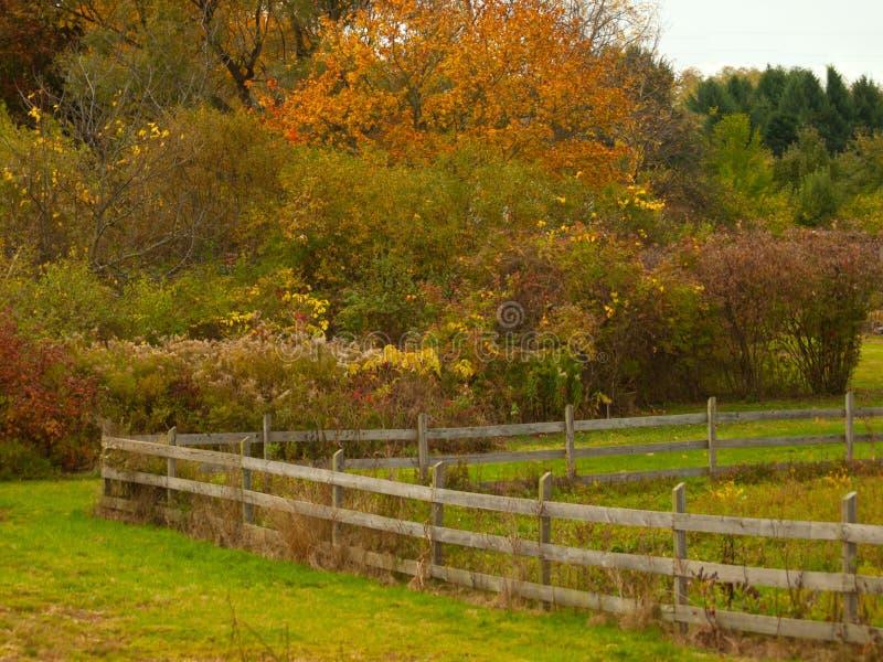 Download Farm fence stock image. Image of horse, autumn, farm - 27340669