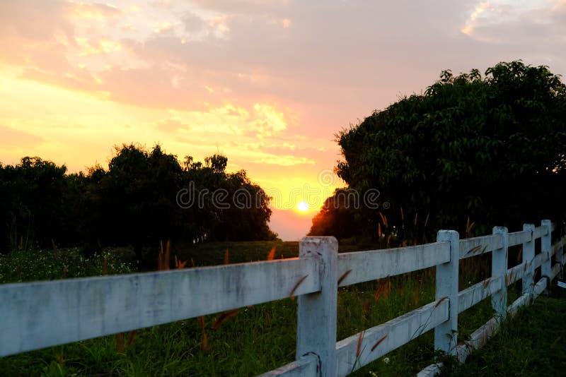 Farm fence & sun sunset sunrise with twilight sky at dawn dusk. Farm fence and sun sunset sunrise with twilight evening sky at dawn dusk royalty free stock image
