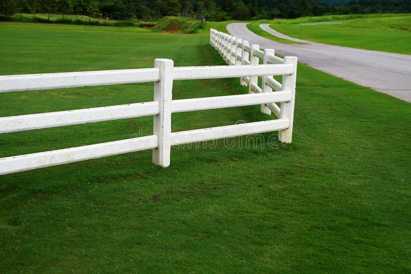 Farm fence. White farm fence and road with green grass royalty free stock images