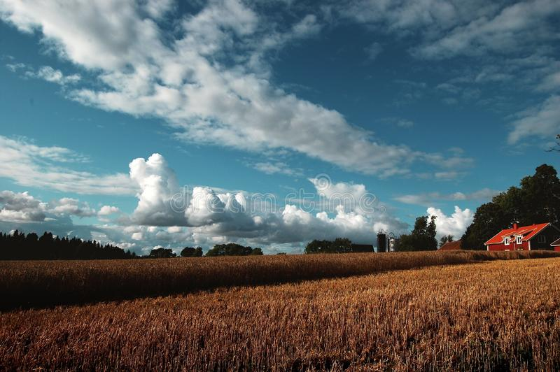 Farm in field in countryside royalty free stock photography