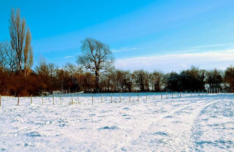 Farm Field Covered In Snow stock photography