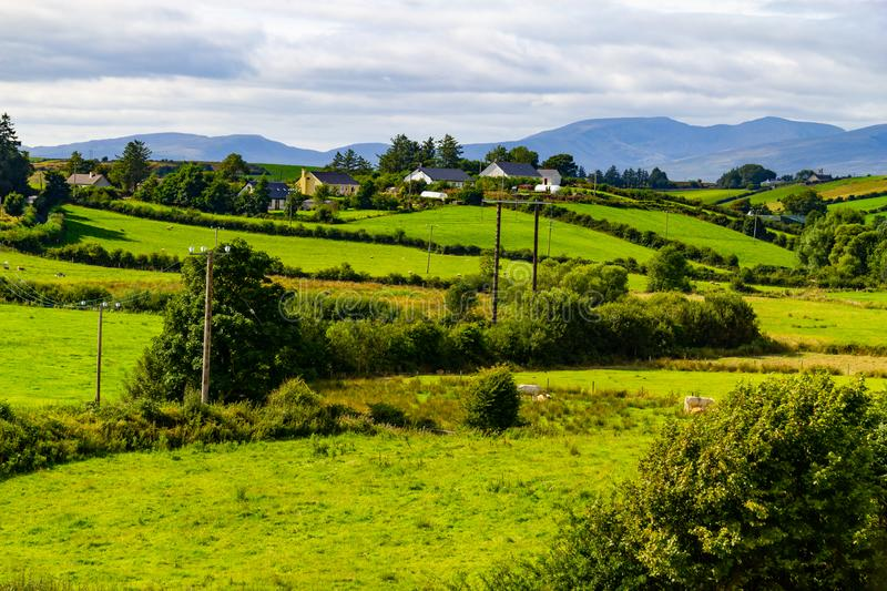 Farm field in Greenway route from Castlebar to Westport. Ireland royalty free stock image