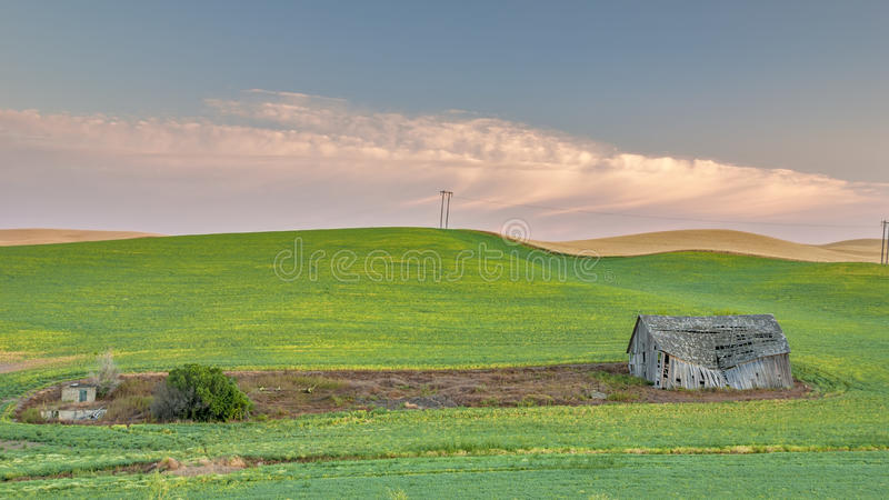 Farm Field Plowed Around A Barn At Sunrise Stock Photos