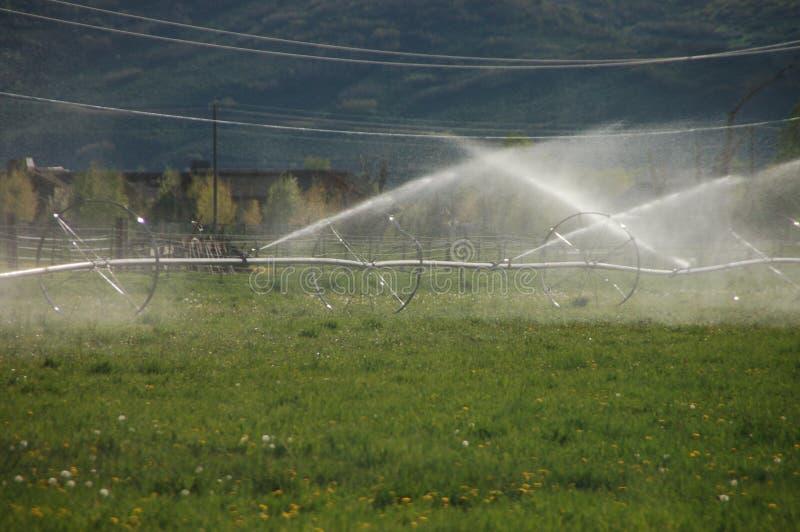 Farm field sprinkling system royalty free stock image