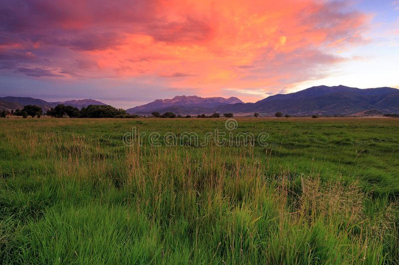 Farm field sunset image in rural Utah, USA. Green farm field image at sunset in Heber Valley, Utah, USA royalty free stock images