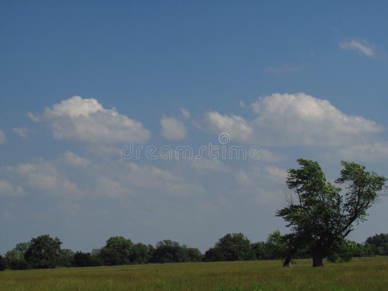 Farm field view Lockwood Missouri stock photo