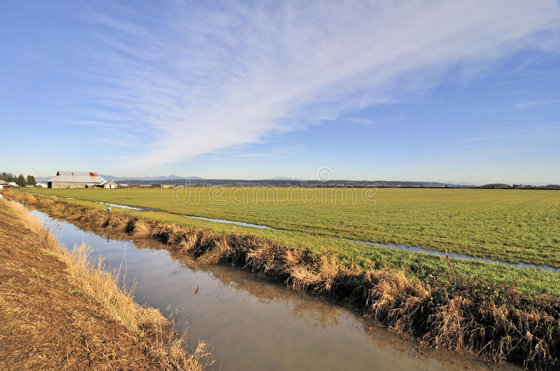 Download Farm field in the winter stock image. Image of green - 28310923