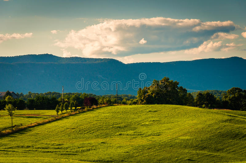 Farm fields and view of Massanutten Mountain, in the Shenandoah stock photos