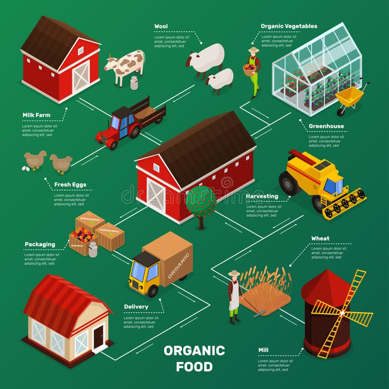 Farm Food Production Flowchart. Organic farming products isometric icons flowchart with farm animals plants workers farmstead buildings and agricultural royalty free illustration