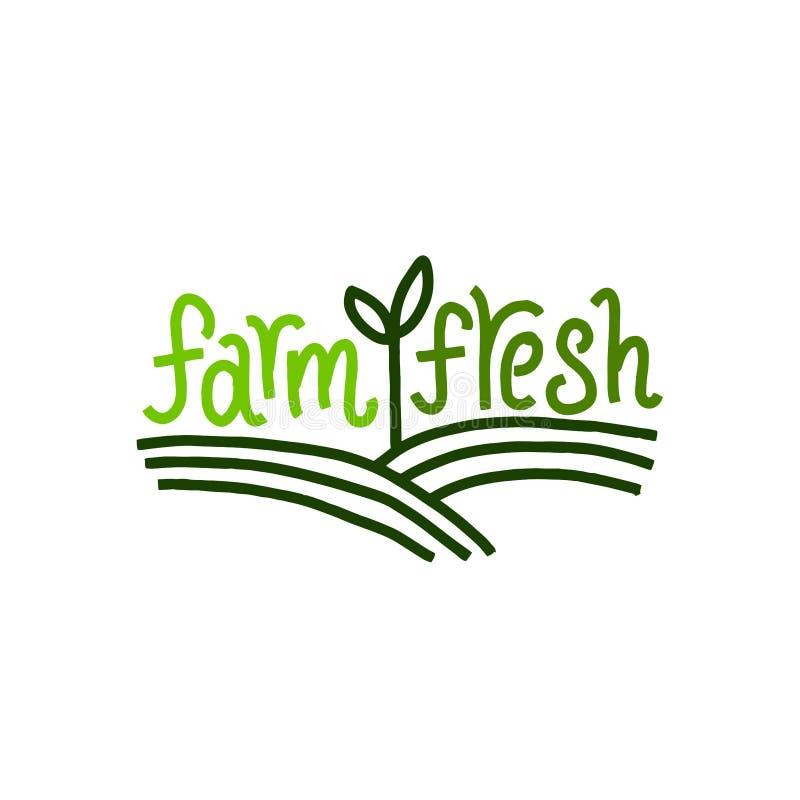 Summer Farm Fresh Poster, Template Or Brochure Stock