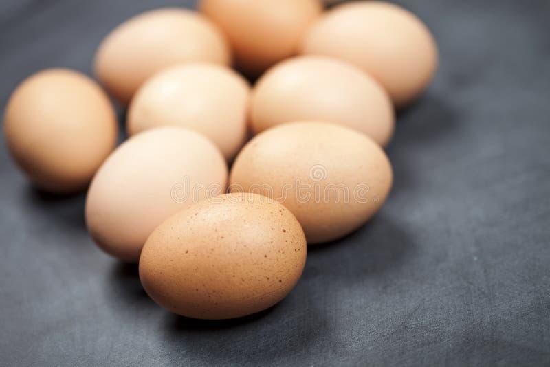 Farm fresh organic chicken eggs closeup stock image