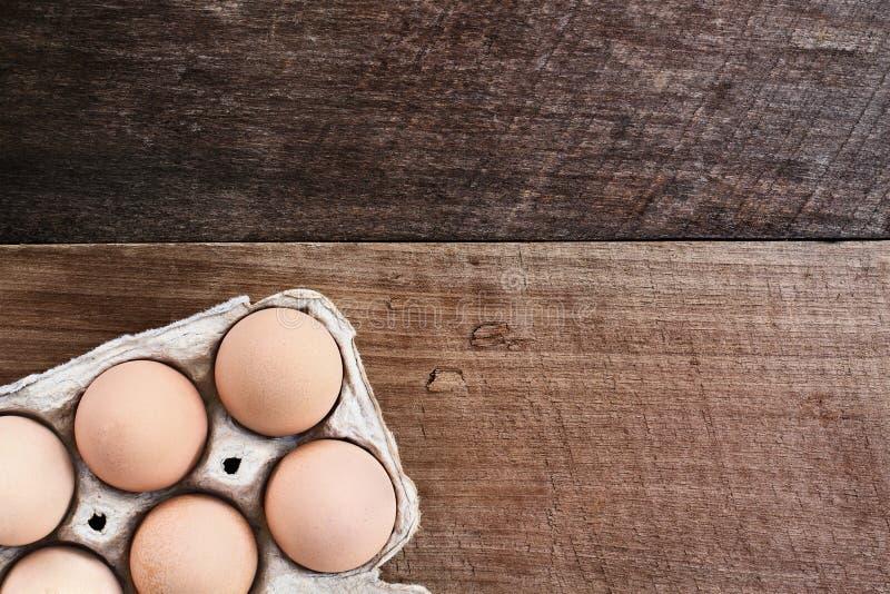 Farm Fresh Organic Eggs in Carton stock photography