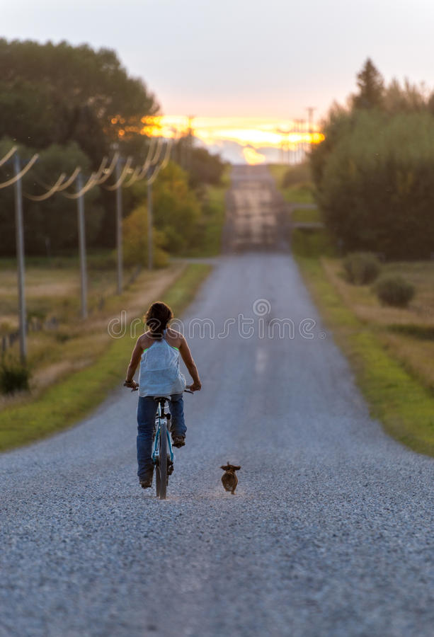 Farm girl bikes down road with dog stock image