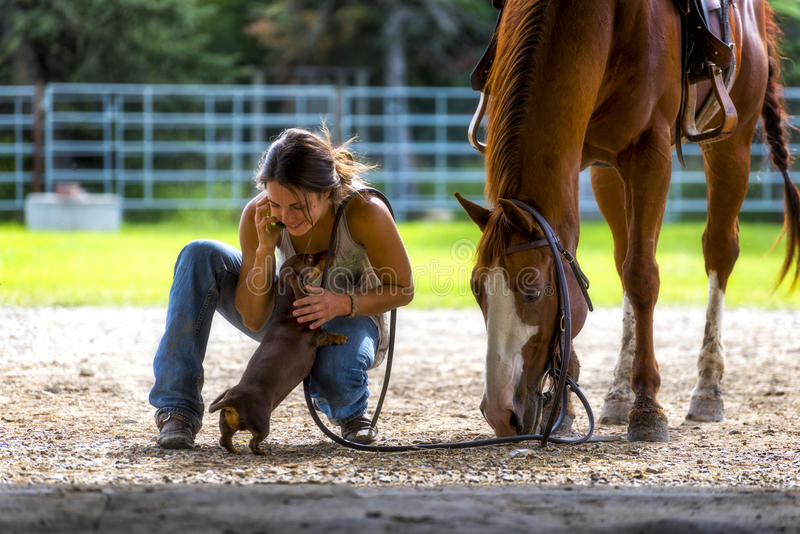 Farm girl on phone with horse and dog stock images