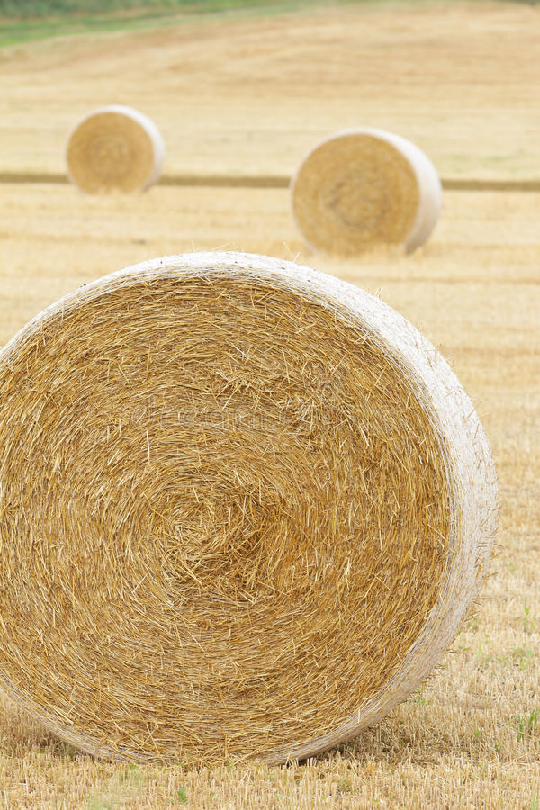 Download Farm Hay Harvest Royalty Free Stock Photos - Image: 32575408