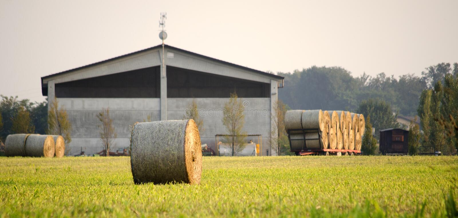Farm and hay roll stock photo