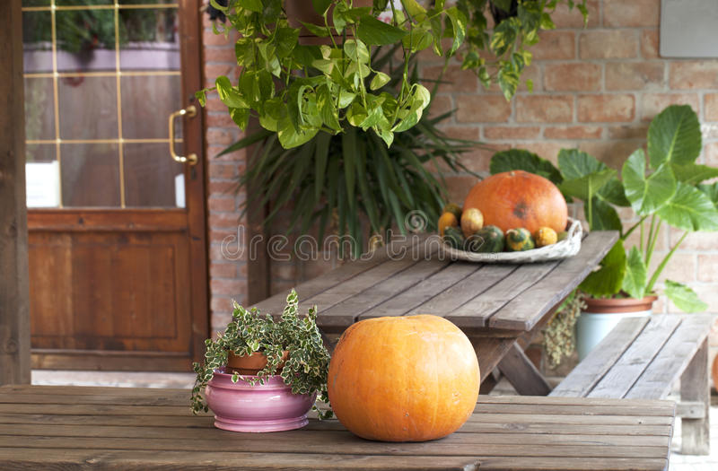 Farm Holidays Decorations Stock Image