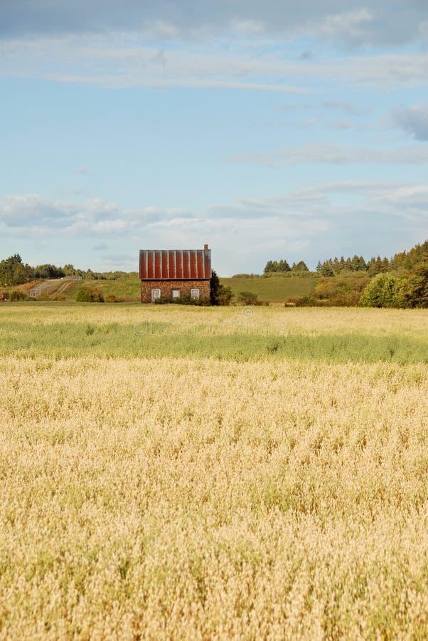 Farm house stock photo