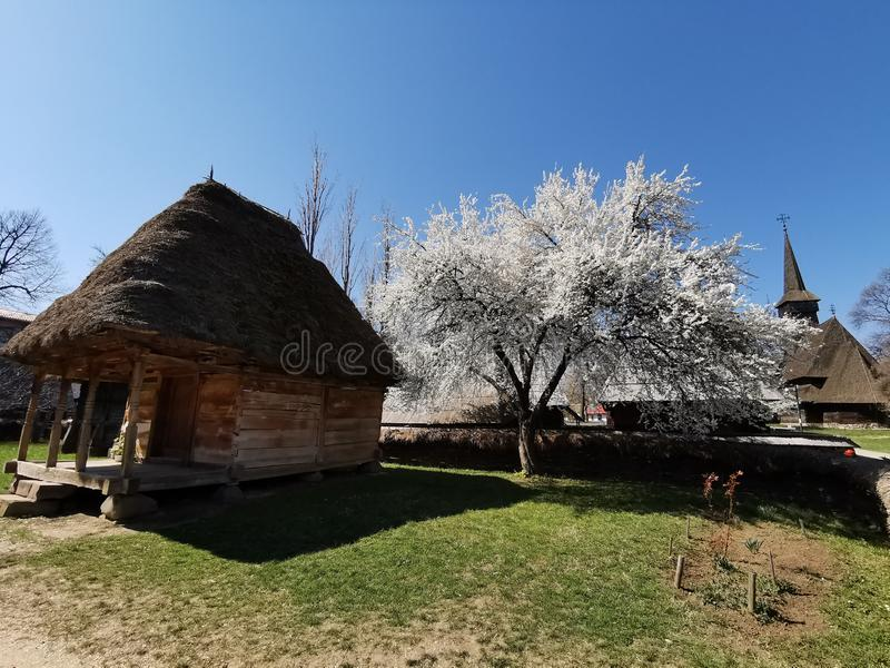 Farm house - inner yard. And straw roof. Old wooden peasant farm in the Maramures area, Romania. Maramures wooden church in the background royalty free stock photography