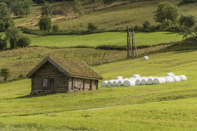 Farm hut on the slopes of the mountains Olden Norway. The grass is planted on the roof to provide insulation during the harsh winters often experienced in stock photos