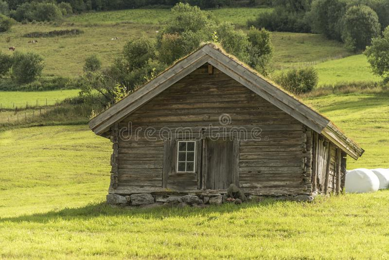Farm hut on the slopes of the mountains Olden Norway. The grass is planted on the roof to provide insulation during the harsh winters often experienced in royalty free stock images
