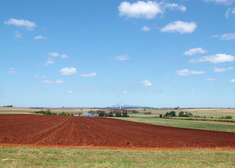 Farm land. Sugar cane farm land post harvest stock photos