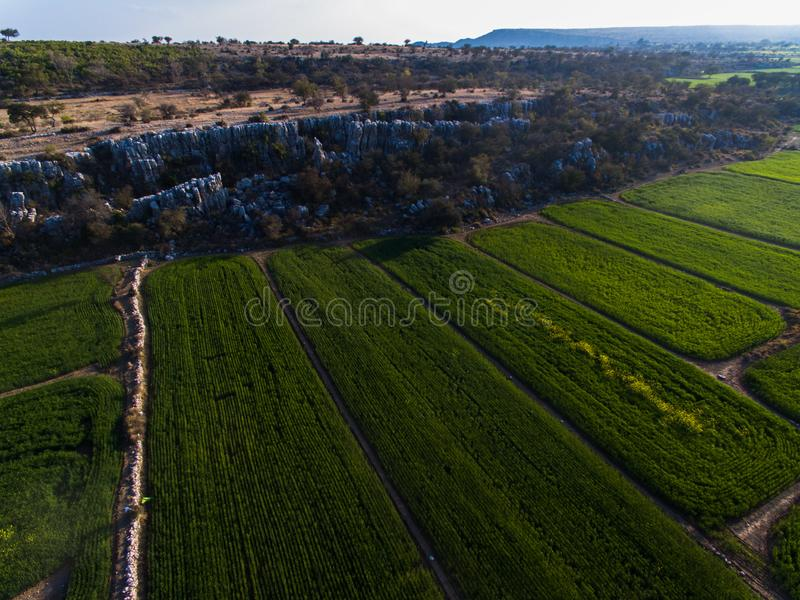 Ariel view of Farm lands and rocky area. Farm lands rocky area plateau pattern agri agriculture eco wheat crop mustard field farmer fields drone ariel view stock photo