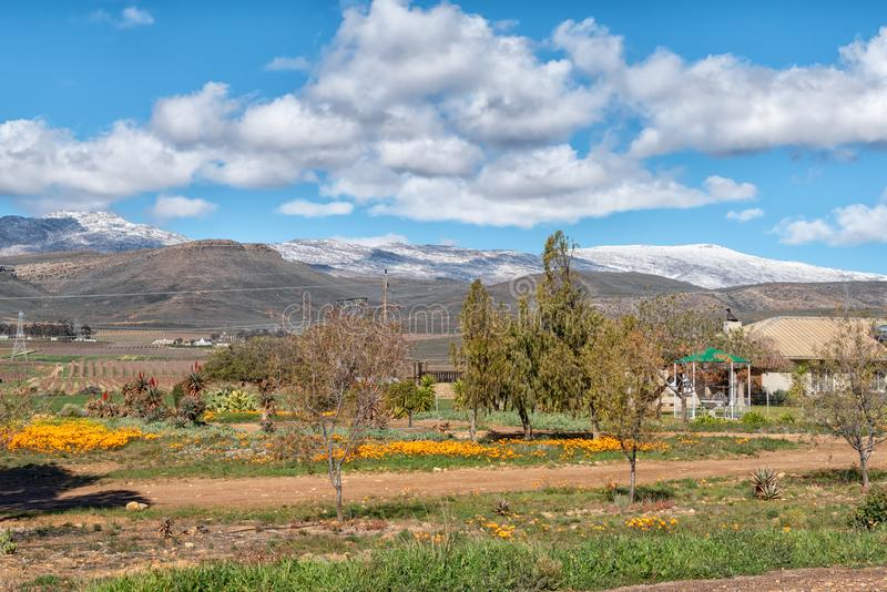 Farm landscape on road R46. Snow on Matroosberg is visible stock photos