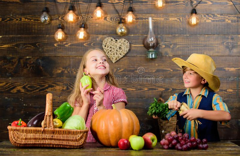 Farm market. Children presenting farm harvest wooden background. Kids farmers girl boy vegetables harvest. Farming. Teaches kids where their food comes from stock image