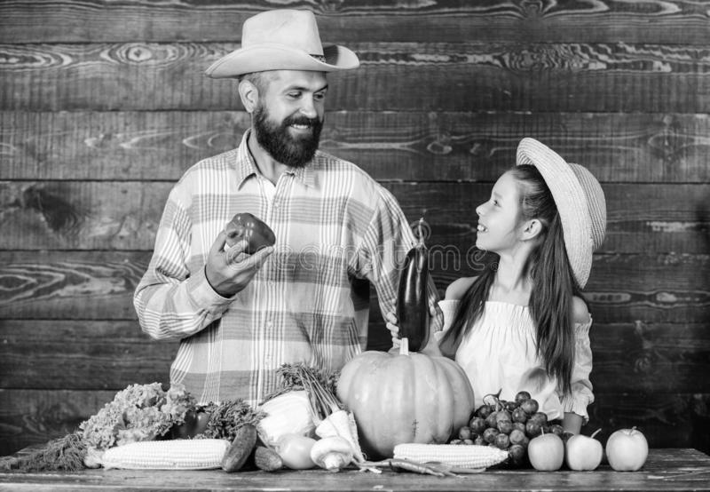 Farm market with fall harvest. Family farm festival concept. Countryside family lifestyle. Man bearded rustic farmer royalty free stock images