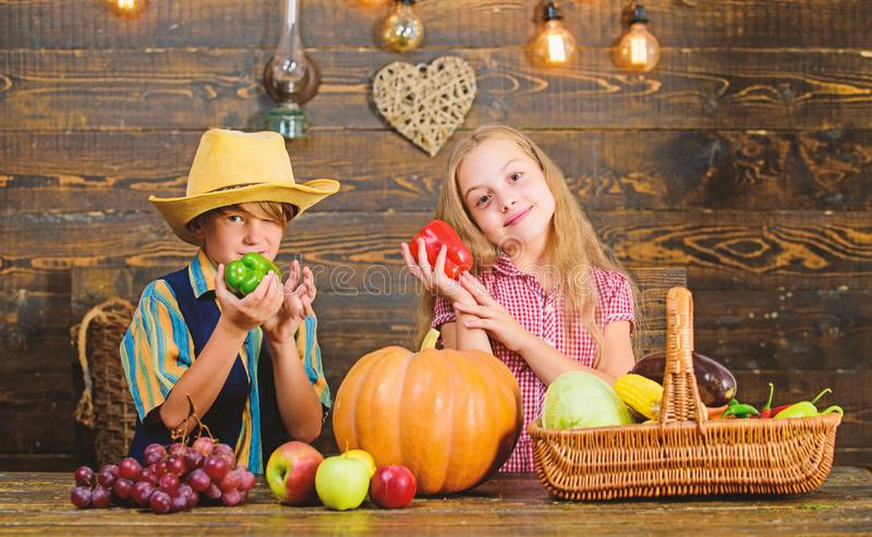 Farm market. Farming teaches kids where their food comes from. Kids farmers girl boy vegetables harvest. Family farm. Siblings having fun. Children presenting royalty free stock image