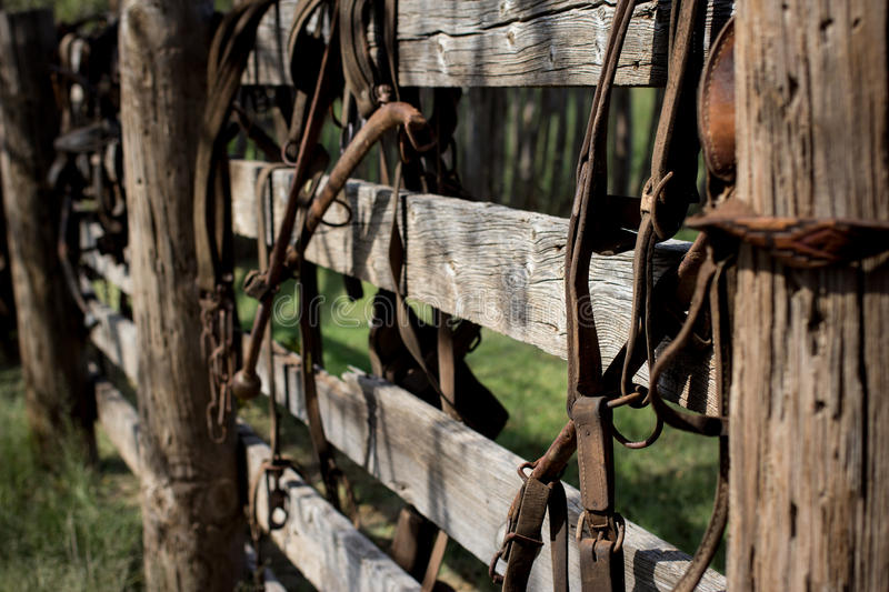 On the Farm. Old farm equipment for horses hanging on a wooden fence stock images
