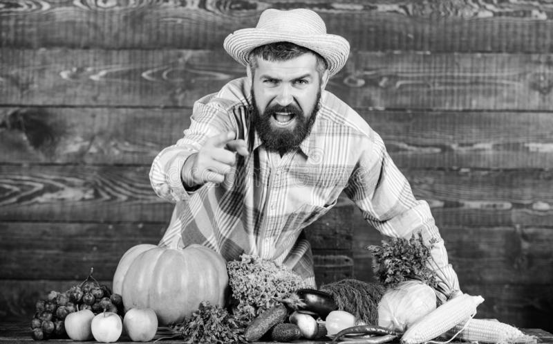 Farm products. seasonal vitamin food. Useful fruit and vegetable. bearded mature farmer. harvest festival. organic and. Natural food. happy halloween. man chef royalty free stock photos