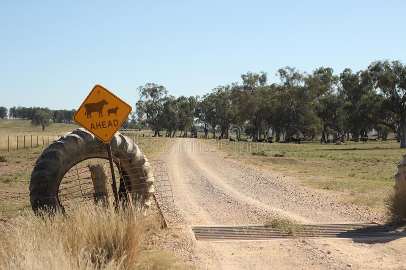 Farm property cattle road crossing grid across a dry drought stricken dusty dirt road in rural New South Wales, Australia royalty free stock photo