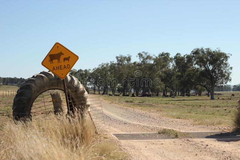 Farm property cattle road crossing grid across a dry drought stricken dusty dirt road in rural New South Wales, Australia stock images