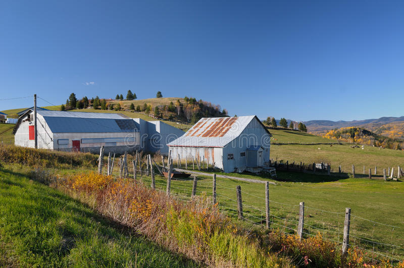 Download Farm in Quebec stock image. Image of fence, field, canada - 24234171