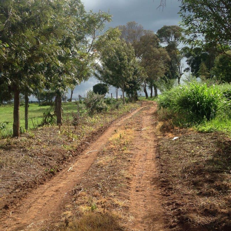 farm road royalty free stock photo