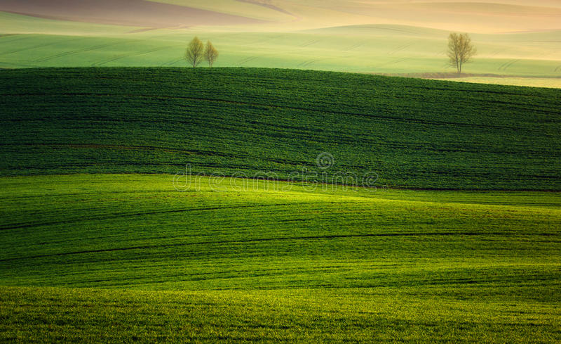 Farm in the spring of rising sun. Farm in the spring of rising sun,landscape stock image