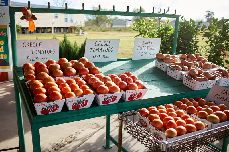 Farm stall with boxes of fresh Creole tomatoes royalty free stock photos