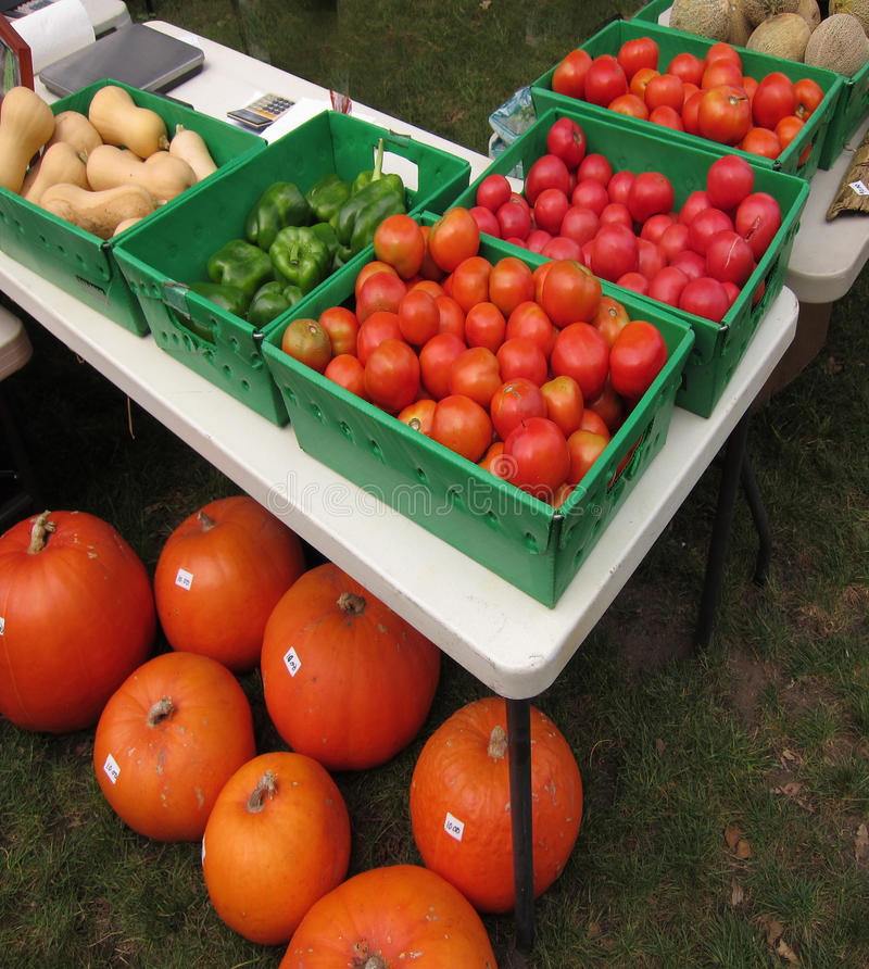 Download Farm Stand Table stock image. Image of harvest, peppers - 21050737