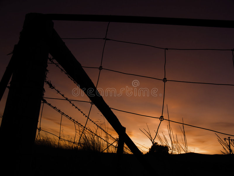Download Farm Sunrise stock photo. Image of beauty, wire, fence, gate - 95184