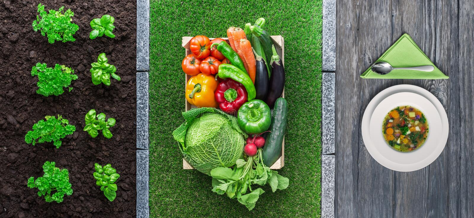 From farm to table royalty free stock image