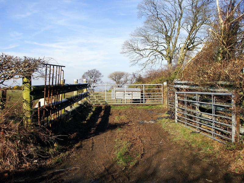 Farm track, with gates and stock feeder stock photos